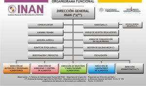 organigramaweb